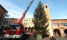 Un Natale senza albero in piazza <br/> non ci sono i soldi per il trasporto