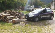 Provò a rubare della legna <br/> beccato dai carabinieri