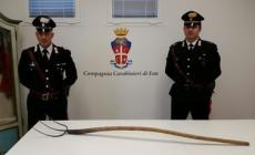 Punta il forcone contro i carabinieri <br/> arrestato un anziano 87enne