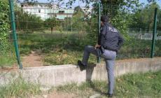 Truffatori e ladri: vietato tornare in Polesine