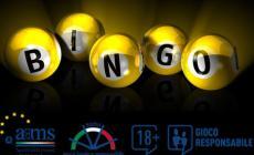 Gaming virtuale: in Italia è febbre di Bingo online