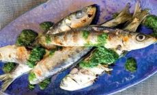 Sardine e Rucola, un nuovo piatto da proporre