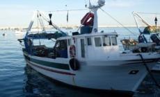 Barche bloccate nel porto, i pescatori perdono la giornata