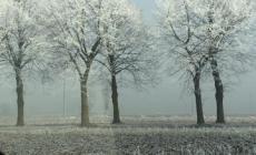 Previsioni: domani mattina (martedì 10 gennaio) neve sul Polesine