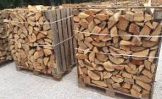 Famiglie al freddo, il comune regala la legna