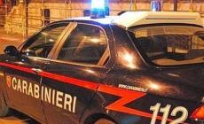 Marocchino picchia i carabinieri, il giudice lo rimette subito in libertà