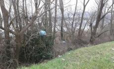 """Porto Tolle, sugli alberi """"sbocciano"""" i rifiuti"""