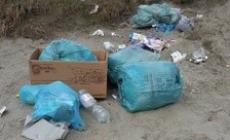 Sacchi di rifiuti abbandonati lungo la strada
