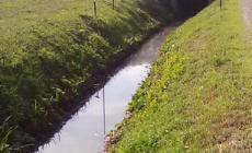 Sporche e inquinate: vietato l'uso delle acque del fossato