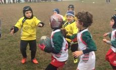 Rugby Frassinelle, un week end ricco di soddisfazioni per i piccoli atleti