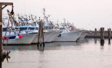 """Barche ancora """"esiliate"""" dal porto di Pila"""