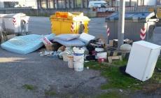 Rovigo, rifiuti in via della Tecnica: una vergogna