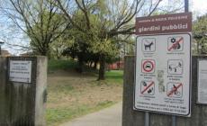 Giardini pubblici ostaggio delle vespe, ieri il primo sopralluogo