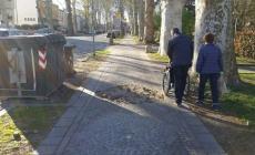 Nei marciapiedi dei viali di Rovigo il porfido è esploso