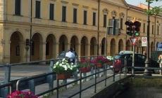 La città si fa più bella con i fiori