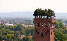 Lucca, dove la musica e la cultura sono di casa
