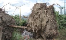 La devastazione dopo il tornado