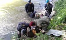 Dall'Adige in secca emergono due ordigni e una bomba a mano