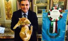 Il Gatto Rossini nell'ufficio del sindaco