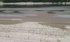 Adige, situazione drammatica: se non piove acquedotti a rischio