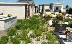 Cimitero di Concadirame invaso da erbacce