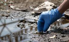 Inquinato il fossato di San Rocco