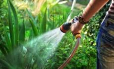 Emergenza: vietato usare l'acqua per innaffiare i giardini o lavare le auto