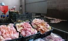 Tempi difficili per lo slow food : Come rilanciare prodotti e disciplinari