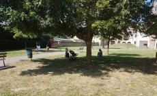 Giardini Zen puliti, Bobo chiede aiuto e la Caniato risponde