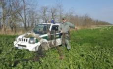 Nelle valli di Igor, riparte la caccia... Sì, alle nutrie