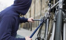 Biciclette, a Cavarzere i ladri non perdonano