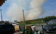 Paura per l'incendio di un campo a Porto Tolle