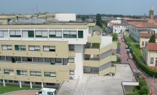 Ospedale di Adria, pochi lavoratori e troppi dirigenti