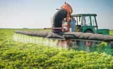 Fattura elettronica: rivoluzione in agricoltura
