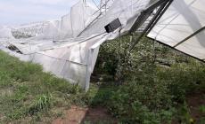 Aziende agricole distrutte dal maltempo, arriva l'aiuto della Regione