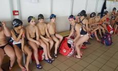 Al polo natatorio crescono giovani campioni