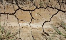 Emergenza idrica in tutta la Regione: 23 milioni al Polesine per combattere la siccità