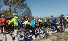 Alla scoperta del Polesine in bicicletta