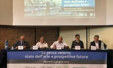 Vivificazione delle lagune, Sic, diritti esclusivi: quale futuro per il Delta?