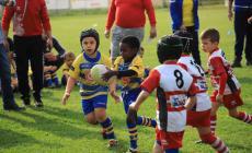Grande successo per la festa del rugby
