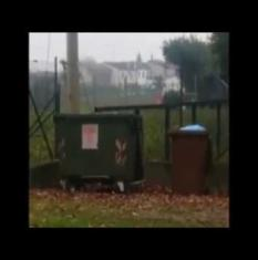 Topi nel giardino della scuola materna dove giocano i bambini