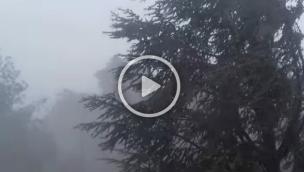 Fortissimo temporale si abbatte sul Polesine