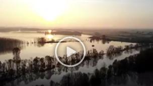 L'alba sul Po, un video splendido e al tempo stesso impressionante