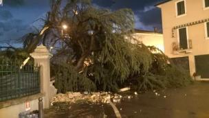 Inferno nella notte, alberi crollati, vento a 90 all'ora, grandine, strade bloccate