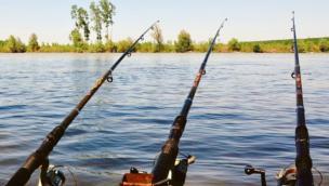 Razzia di canne da pesca lungo il Po