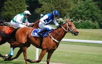 Disarcionata dal cavallo durante una gara: 15enne in ospedale
