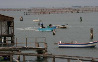 Pesca, salta l'accordo per i diritti esclusivi