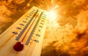 Dichiarato l'allarme climatico per disagio fisico