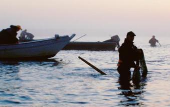 """""""Pesca, sarà difficile evitare il bando"""""""