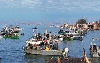 Il giorno della rinascita: i pescatori tornano al lavoro!